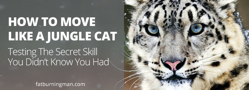 How To Move Like A Jungle Cat: Testing The Secret Skill You Didn't Know You Had | FatBurningMan.com