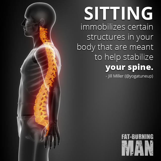 Sitting Immobilizes certain structures in your body that are meant to help stabilize your spine. Jill Miller, Yoga Tune-up, Recovery, Fat-Burning, Well being, human body,